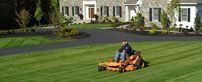 Landscaping Maintenance